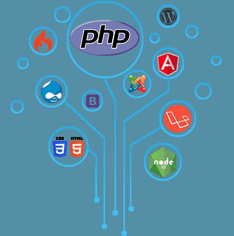 Dedicated Web Programmers