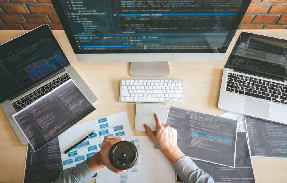 Professional Developer programmer working a software website des